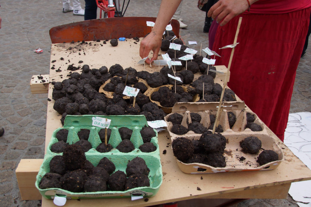 Flickr, Floris Looijesteijn: Seed Bombs, 2013