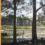#sdg11inmexicocity: Turning an Asphalt Plant Into a Park